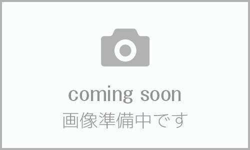 櫻日和画像_1
